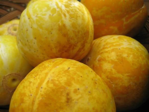 lemon cukes