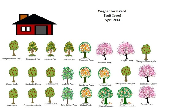 Farmstead Tree Map