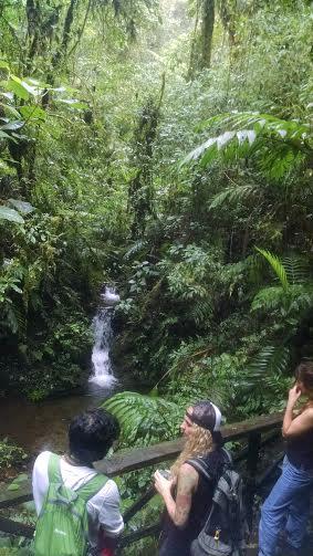 monteverde walk